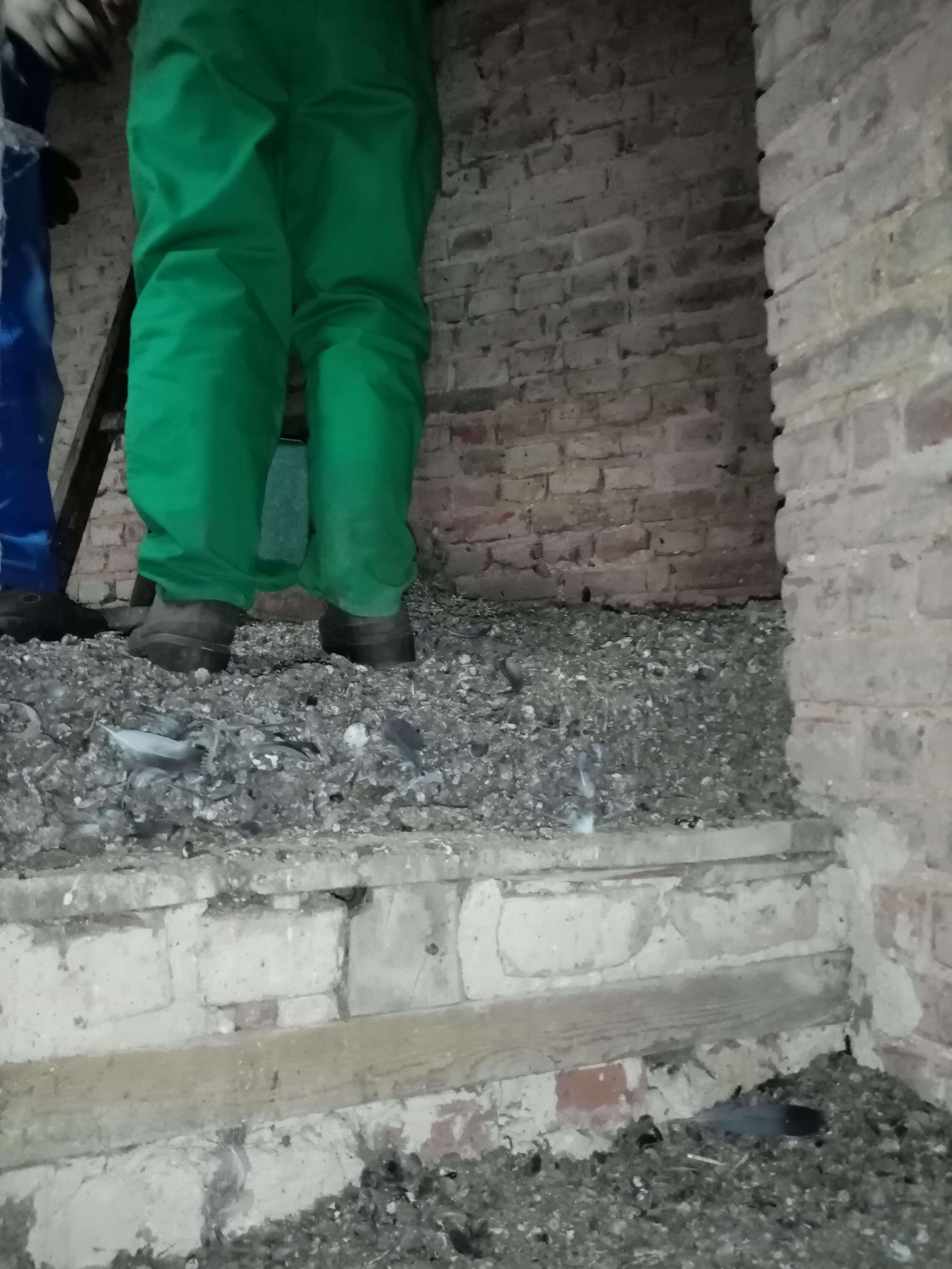chantier eglise havernas